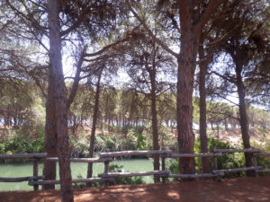 Sardegna East coast 2017